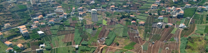 Regional Directorate of Statistics of Madeira releases Agriculture and Fishery Statistics for 2020 (Read more...)