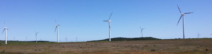 No 1.º semestre de 2018, a produção de energia elétrica na RAM aumentou 0,8% face ao período homólogo (Ler mais...)