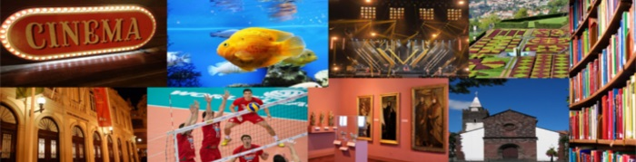 In 2018, the number of museum visitors decreased while cinema and live shows spectators also dropped. Expenditure in cultural and sports activities by the local administration increased (Read more...)